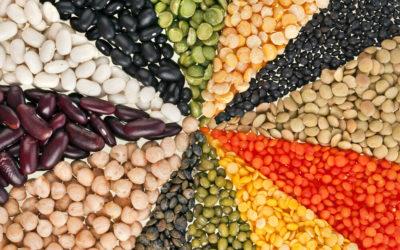 Dal (Lentils & Beans)